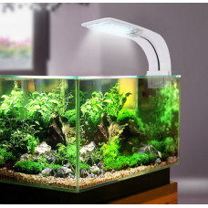 На сколько долго нужно оставлять включённой подсветку аквариума?