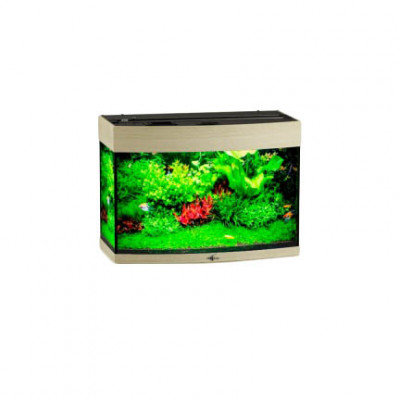 Аквариум без тумбы Biodesign Панорама 70 (61x33x45) см