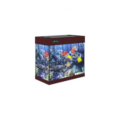 Аквариум Карон без тумбы 70 литров прямоугольный (60х30х46) см