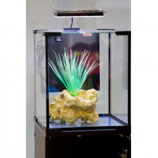 Аквариум Аквас Нанокуб 10 л (22х22х25) см