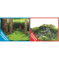 Фон двухсторонний с одной самоклеящейся стороной Затопленный лес/Камни с растениями 30x60см 9086/908
