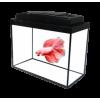Аквариумы для конкретных видов рыб (петушки, креветки, пираньи)
