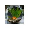 Круглые аквариумы